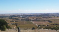 Fewer than 15% of Australians live in rural areas. This picture shows the Barossa Valley wine producing region of South Australia.